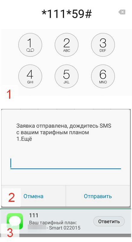 по номеру телефона узнать смс